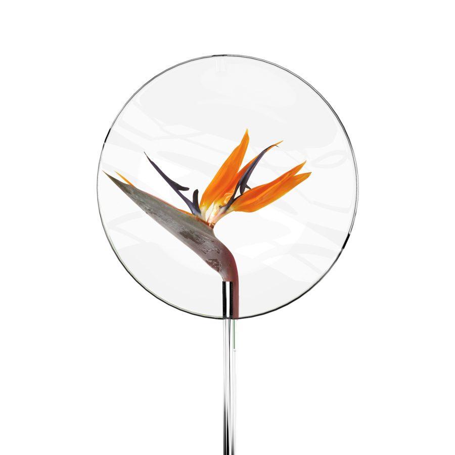 Vufrom designed by Julien Bonzom